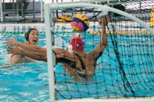 Les sports d'équipes et leurs avantages : Frisbee et Water Polo